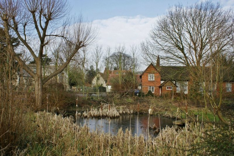 Village pond with the Church, Vicarage, Church Room, School House and Victorian part of Radley Primary School behind